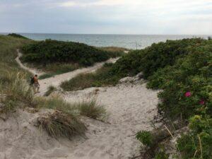 Langeland - Urlaub in der dänischen Südsee